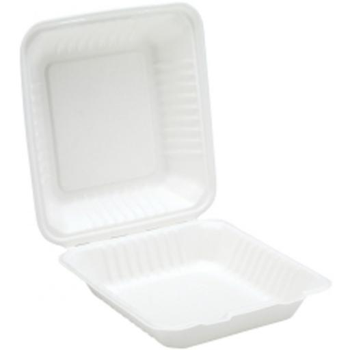 "White 8"" Paper Meal Box Containers - Biodegradable Bagasse Sugarcane"