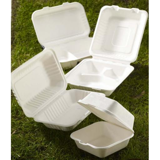 Paper Biodegradable Containers