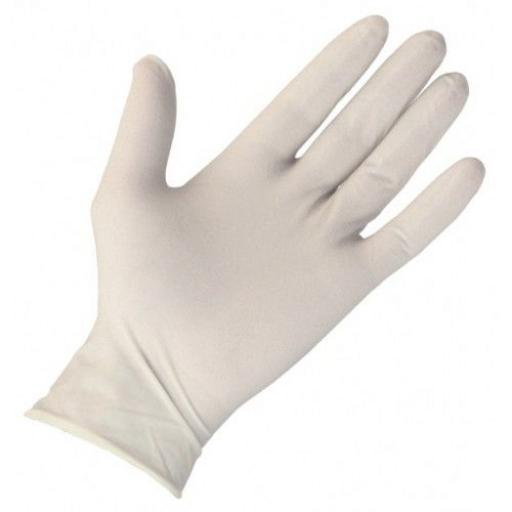 Latex Powder Free Gloves Large 100 Pack - Examination / Ambidextrous / Non Sterile / Single Use Only
