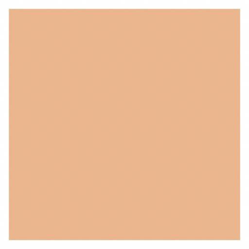 Napkins Peach.jpg